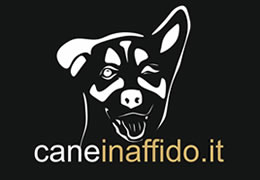cani in affido